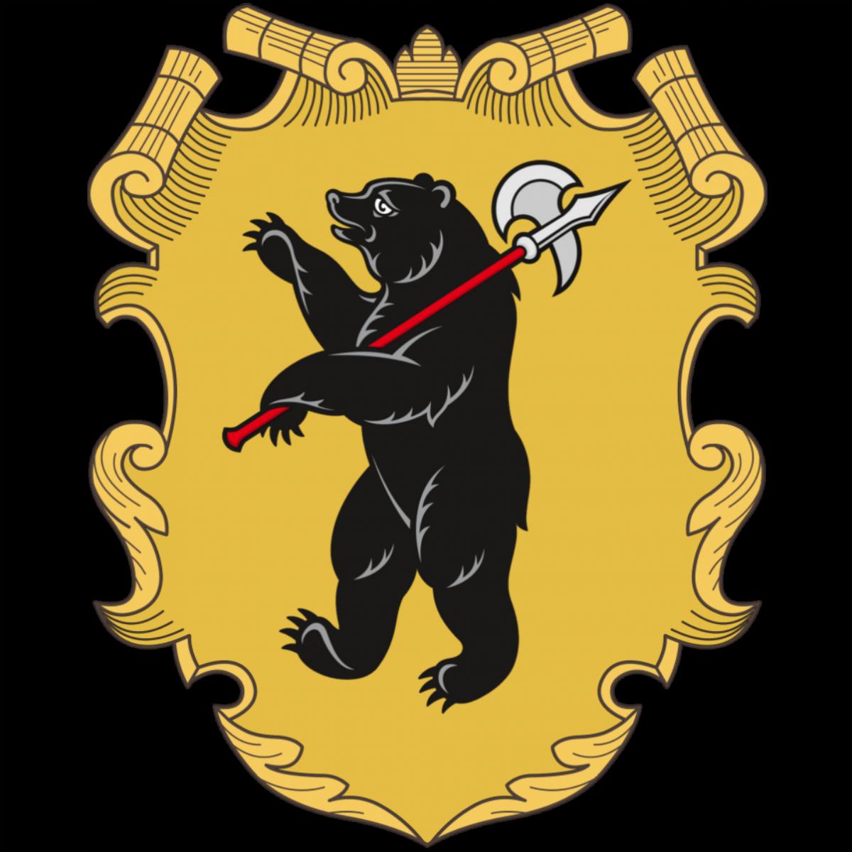 г. Ярославль 8-10 января 2022 г.